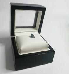 algordanza-my-memorial-diamond-princess_box-8-min